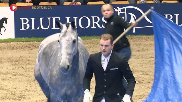Ha szereted a lovakat, ezt a videót is imádni fogod! De többet nem árulunk el róla...